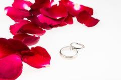Pétalos color de rosa rojos con el anillo de diamante en blanco Foto de archivo