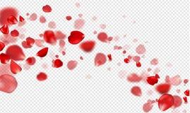 Pétalos color de rosa rojos que caen en un fondo transparente Ilustración del vector stock de ilustración