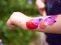Pétalos coloridos hermosos Foto de archivo libre de regalías