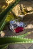 Pétalos con los zapatos y la cascada en fondo Imagen de archivo