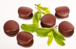 Pétalos de Chokolate con las hojas de menta Fotografía de archivo