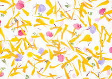 Pétalos de flores en un fondo blanco imagen de archivo
