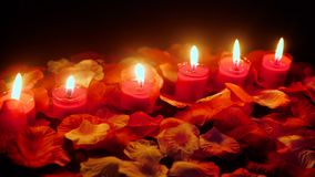 Pétalos de la flor con la cantidad ardiente de la vela para el día de San Valentín de saludo metrajes