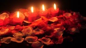 Pétalos de la flor con la cantidad ardiente de la vela para el día de San Valentín de saludo almacen de metraje de vídeo