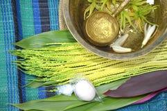 Pétalos de la flor en agua con la cucharada de oro Fotografía de archivo libre de regalías
