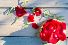 Pétalos de rosas rojas foto de archivo