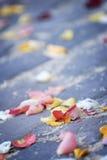 Pétalos de Rose dispersados Fotos de archivo