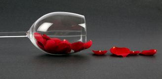 Pétalos de Rose en un vidrio de vino Fotografía de archivo libre de regalías