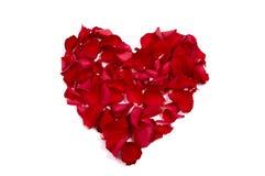 Pétalos de Rose hechos de corazón Imagen de archivo