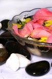 Pétalos de Rose y balneario Fotografía de archivo libre de regalías