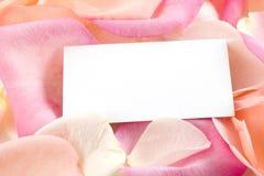 Pétalos de Rose y tarjeta de visita Fotos de archivo libres de regalías