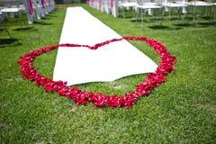 Pétalos en forma de corazón de rosas rojas Imagen de archivo libre de regalías