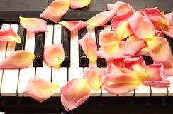 Pétalos en piano Imágenes de archivo libres de regalías