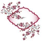 Pétalos japoneses de la flor en ramas Fotos de archivo