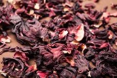Pétalos rojos de hibiscos Fondo de Brown imagen de archivo
