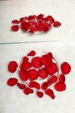 Pétalos rojos en el tazón de fuente Imagen de archivo