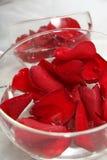 Pétalos rojos en el tazón de fuente Fotografía de archivo