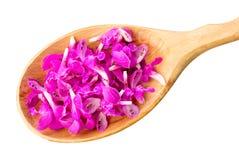 Pétalos rosados brillantes delicados de la flor en una opinión de madera del primer de la cuchara desde arriba aislados en blanco Fotografía de archivo libre de regalías