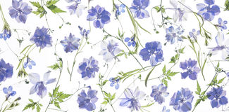 Pétalos y hojas púrpuras de la flor fotos de archivo libres de regalías