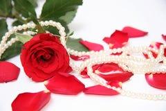 Pétalos y perlas de Rose Foto de archivo libre de regalías