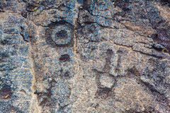 pétroglyphes antiques Photographie stock
