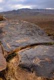Pétroglyphes d'Anasazi avec le fond de montagnes Image libre de droits
