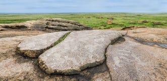 Pétroglyphes dans le monument archéologique Terekty-Aulie Image libre de droits