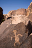 Pétroglyphes de gorge d'Anasazi Photographie stock