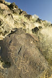 Pétroglyphes de natif américain au monument national de pétroglyphe, en dehors d'Albuquerque, le Nouveau Mexique Image libre de droits