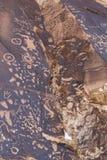 Pétroglyphes de roche de journal Image stock