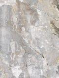 Pétroglyphes sur le lac Baïkal photographie stock