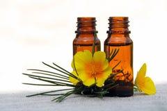 Pétrole d'arome dans des bouteilles avec le pin et la fleur Images libres de droits