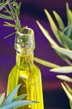 Pétrole de l'olivier, romarin Image libre de droits