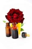 Pétrole des roses Photographie stock libre de droits