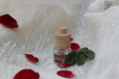 Pétrole et pétales de Rose Photos stock