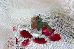 Pétrole et pétales de Rose Photographie stock
