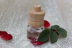 Pétrole et pétales de Rose Photographie stock libre de droits