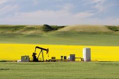 Pétrole Pumpjack Alberta d'huile photos libres de droits