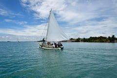 Pêche à Belize image stock