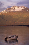 Pêche photo libre de droits
