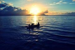 Pêche allée Image libre de droits