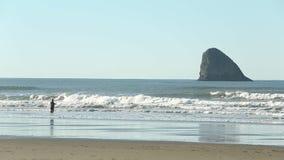 Pêche au surfcasting de côte de l'Orégon, roche de pyramide banque de vidéos