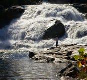 Pêche aux automnes saumonés photos libres de droits