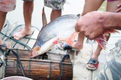 Pêche avec des pièges. Image stock