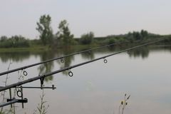 Pêche avec des tiges sur le lac images stock