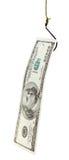 Pêche avec 100 dollars d'amorce de billet de banque sur l'hameçon Photographie stock