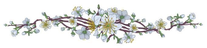 Pêche Cherry Blossom Flowers Background Design Illustration de Vecteur