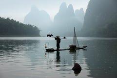 Pêche chinoise d'homme avec des oiseaux de cormorans Images libres de droits