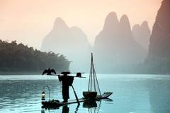 Pêche chinoise d'homme avec des oiseaux de cormorans Photos libres de droits