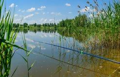 Pêche d'été sur le lac de forêt Photographie stock libre de droits